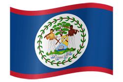 Flag of Belize - Waving