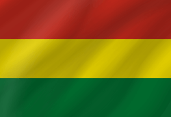 Flag of Bolivia - Wave