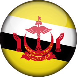 Flag of Brunei - 3D Round