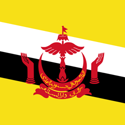 Flagge von Brunei Vektor - Gratis Download