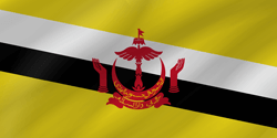 Flag of Brunei - Wave