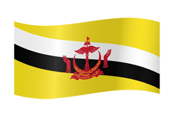Flag of Brunei - Waving