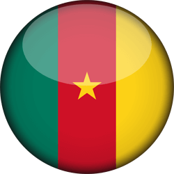 Cameroon flag vector - free download