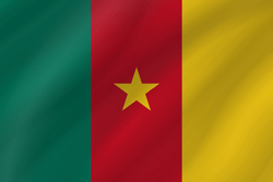 Drapeau du Cameroun - Vague
