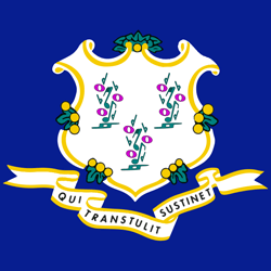 Connecticut flag vector