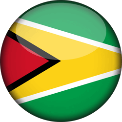 Flag of Guyana - 3D Round