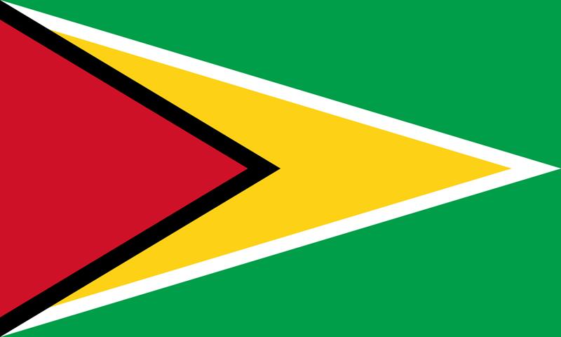 Guyana Flagge Paket