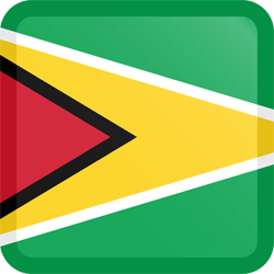 Flag of Guyana - Button Square