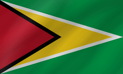 Flag of Guyana - Wave