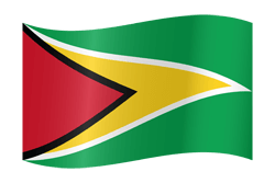 Flag of Guyana - Waving