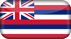 Flag of Hawaii - 3D