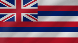 Flagge von Hawaii - Welle