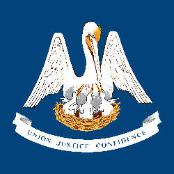 Louisiana flag vector