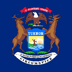 Michigan flag vector