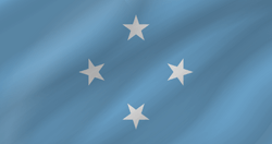 Micronesia flag vector - free download