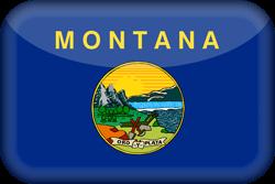 Drapeau du Montana - 3D