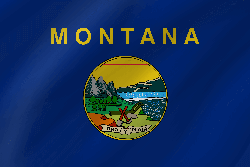 Flag of Montana - Wave