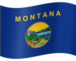 Flag of Montana - Waving