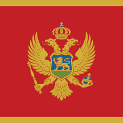 Flag of Montenegro - Square