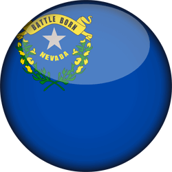 Flag of Nevada - 3D Round