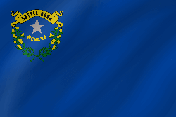 Flag of Nevada - Wave