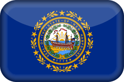 Flagge von New Hampshire - 3D