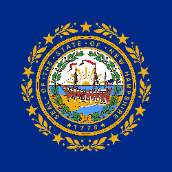 Drapeau du New Hampshire - Carré