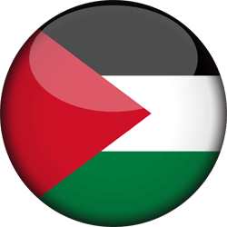 Flag of Palestine - 3D Round