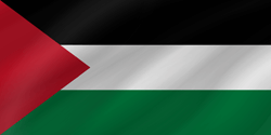 Flag of Palestine - Wave