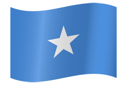 Flag of Somalia - Waving