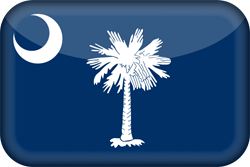 Vlag van South Carolina - 3D