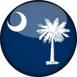 Vlag van South Carolina - 3D Rond