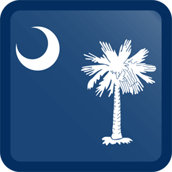 Vlag van South Carolina - Knop Vierkant