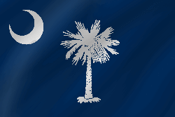 Flagge von South Carolina - Welle