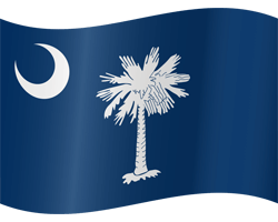 Flagge von South Carolina - Winken