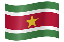 Suriname flag icon - free download