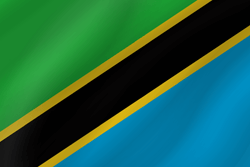 Flag of Tanzania - Wave