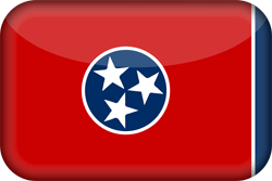 Flag of Tennessee - 3D