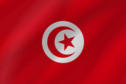 Drapeau de la Tunisie - Vague