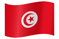 Flag of Tunisia - Waving