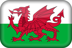 Flag of Wales - 3D