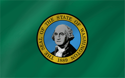 Flagge von Washington - Welle